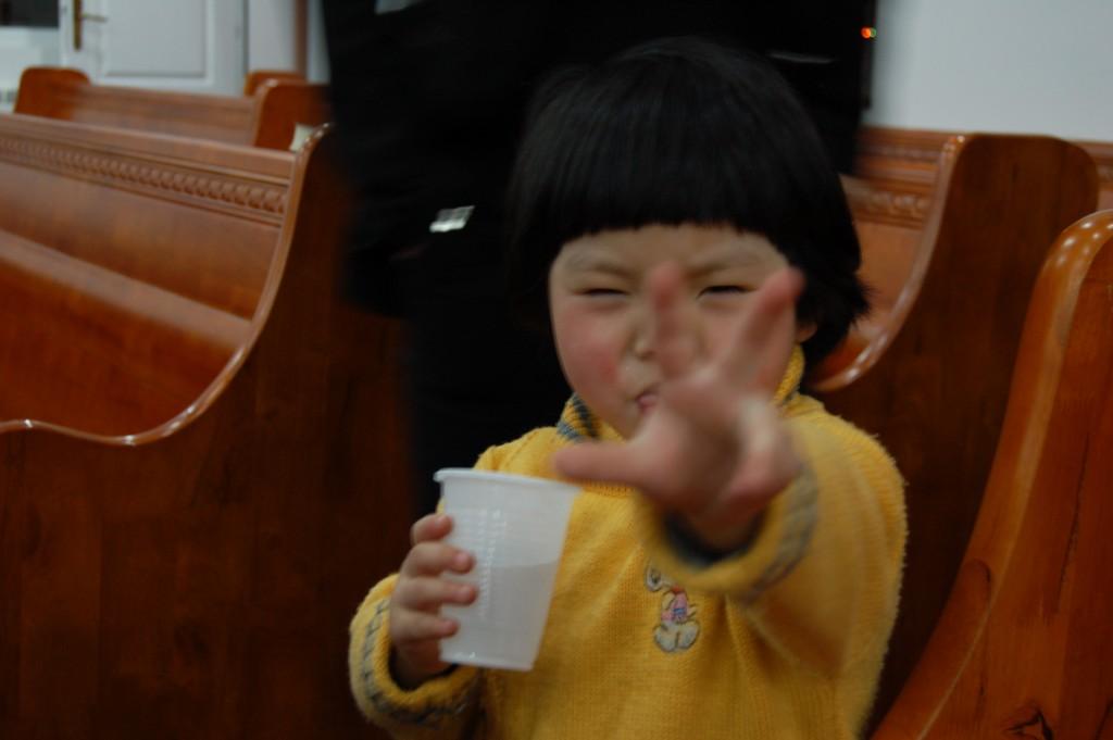 Les plus jeunes membres de la communauté chinoise pourraient s'intégrer pleinement à la société serbe, selon Radosav Pušić.